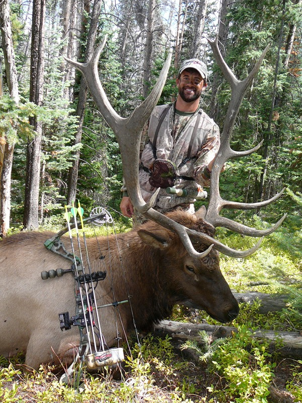 Colorado Elk, 2009