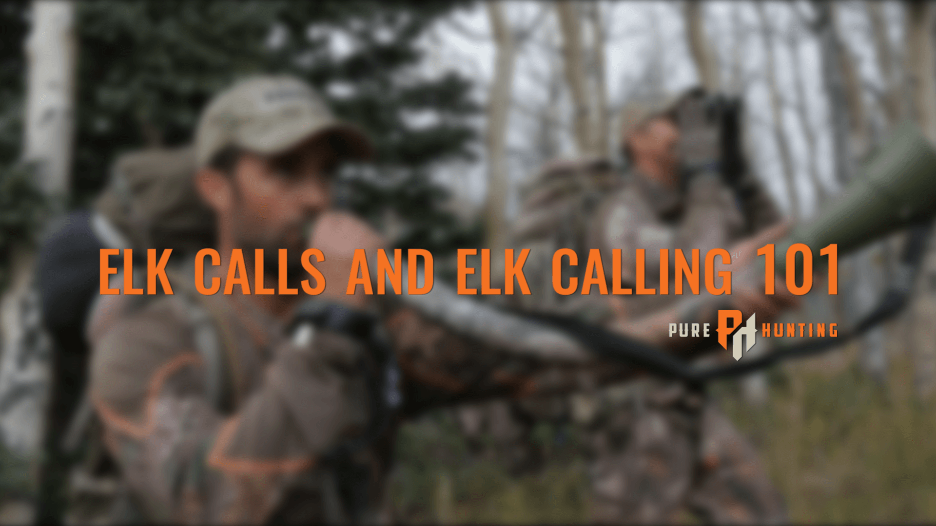 Tips and Tactics | Bow Hunting Elk in September - Pure Hunting